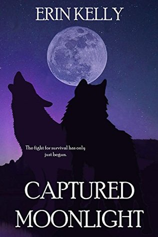 Captured Moonlight by Erin Kelly