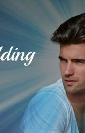 The Wedding by Jennifer L. Armentrout