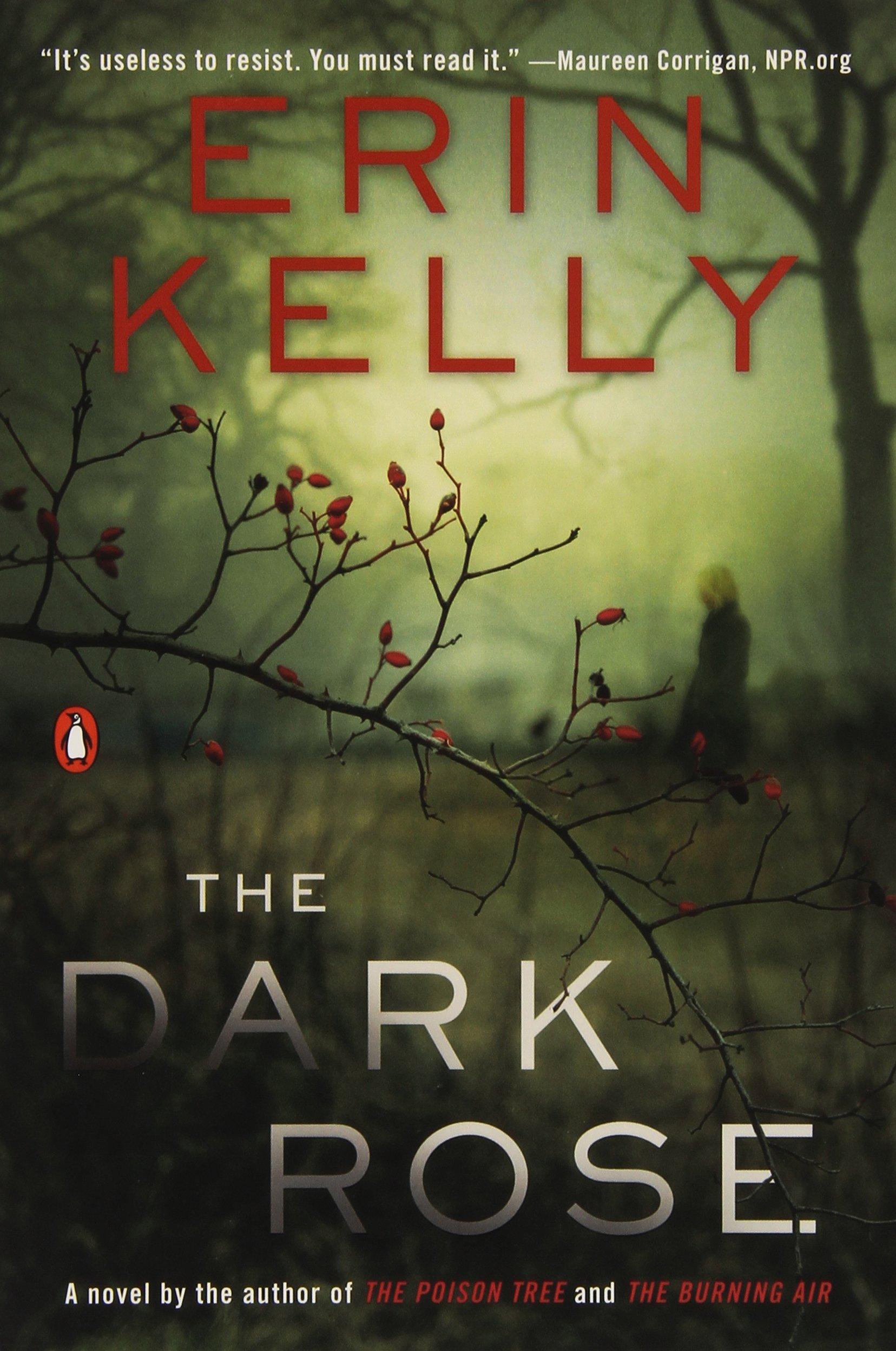 The Dark Rose by Erin Kelly