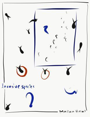 Invasive Species by Marwa Helal