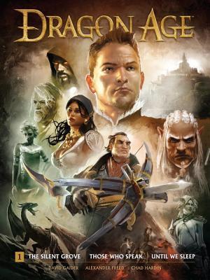 Dragon Age, Volume 1 by Chad Hardin, Michael Atiyeh, David Gaider, Anthony Palumbo