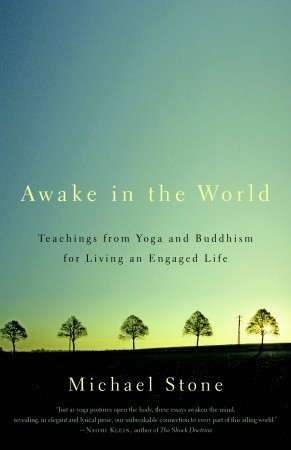 Awake in the World: Teachings from Yoga and Buddhism for Living an Engaged Life by Michael Stone