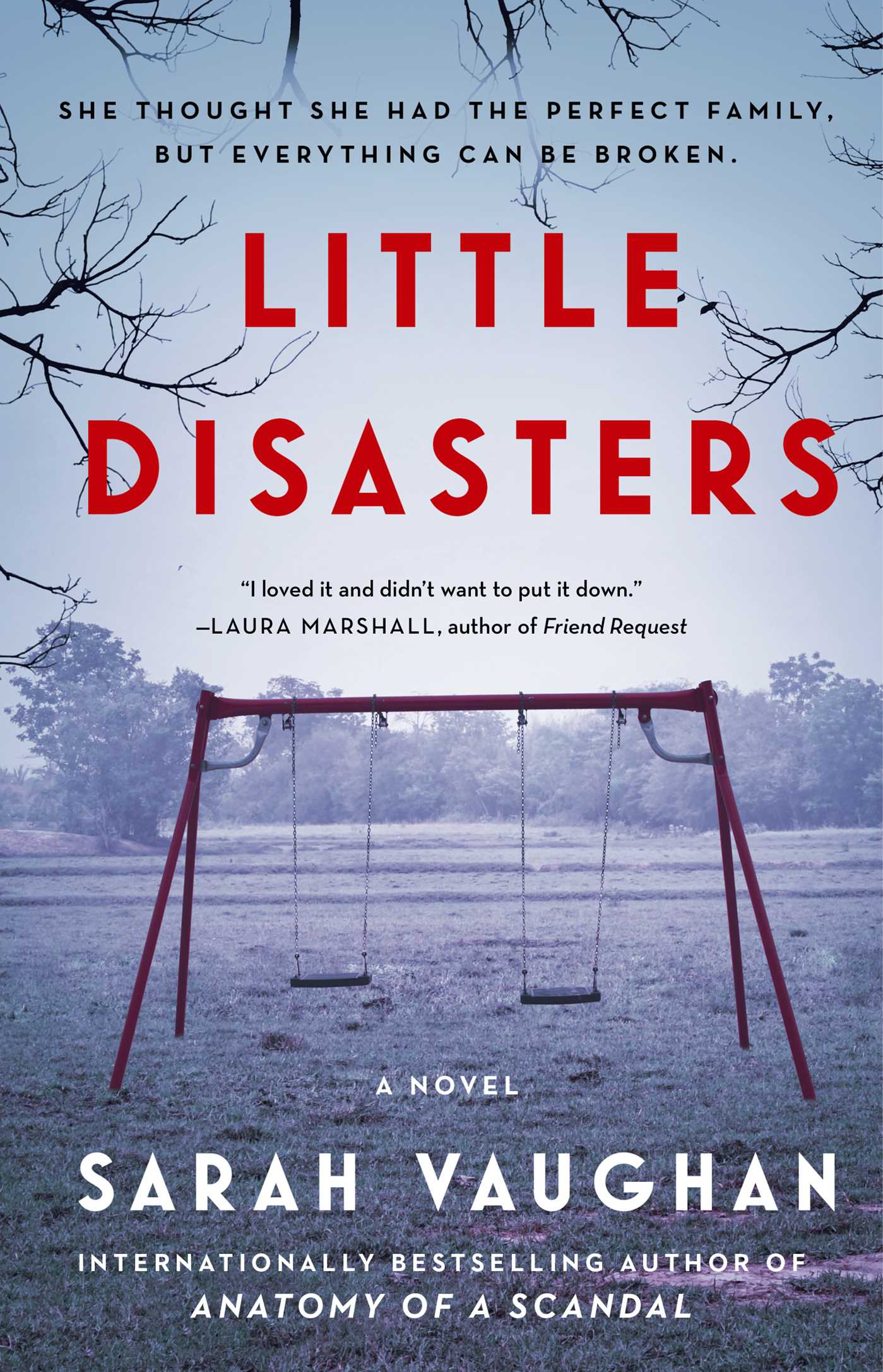 Little Disasters: A Novel by Sarah Vaughan