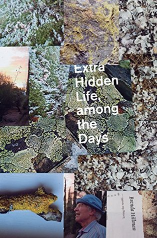 Extra Hidden Life, among the Days by Brenda Hillman