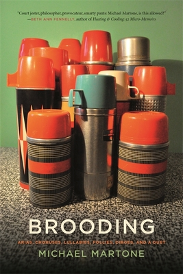Brooding: Arias, Choruses, Lullabies, Follies, Dirges, and a Duet by Michael Martone