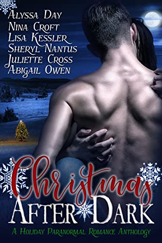 Christmas After Dark by Alyssa Day, Abigail Owen, Nina Croft, Lisa Kessler, Sheryl Nantus, Juliette Cross