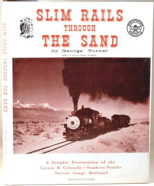 Slim Rails Through the Sand by George Turner