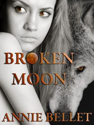 Broken Moon by Annie Bellet