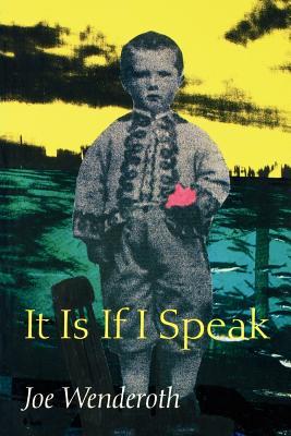 It Is If I Speak by Joe Wenderoth