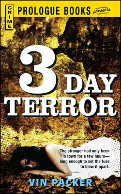 3 Day Terror by Vin Packer