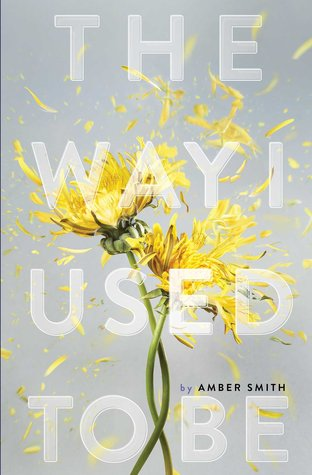 The Way I Used to Be by Amber Smith