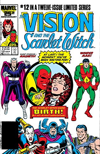 Vision and the Scarlet Witch (1985-1986) #12 by Steve Englehart