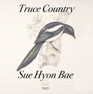 Truce Country by Sue Hyon Bae