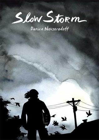 Slow Storm by Danica Novgorodoff