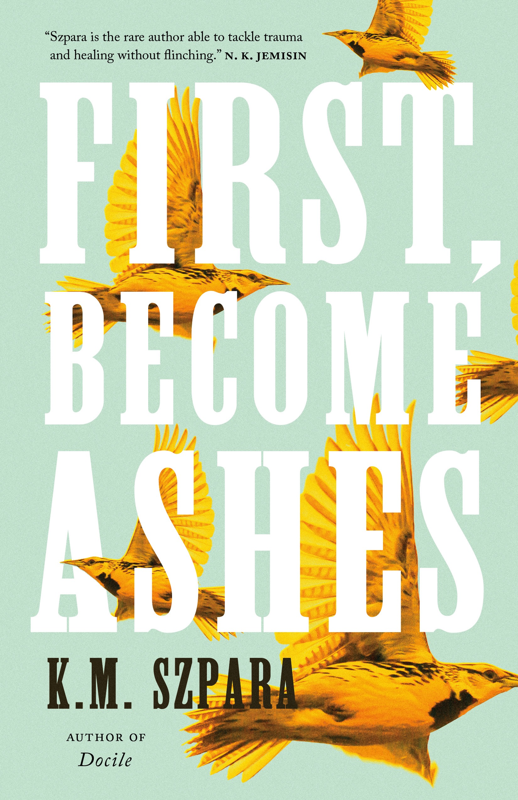First, Become Ashes by K.M. Szpara