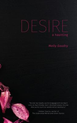 Desire: A Haunting by Molly Gaudry