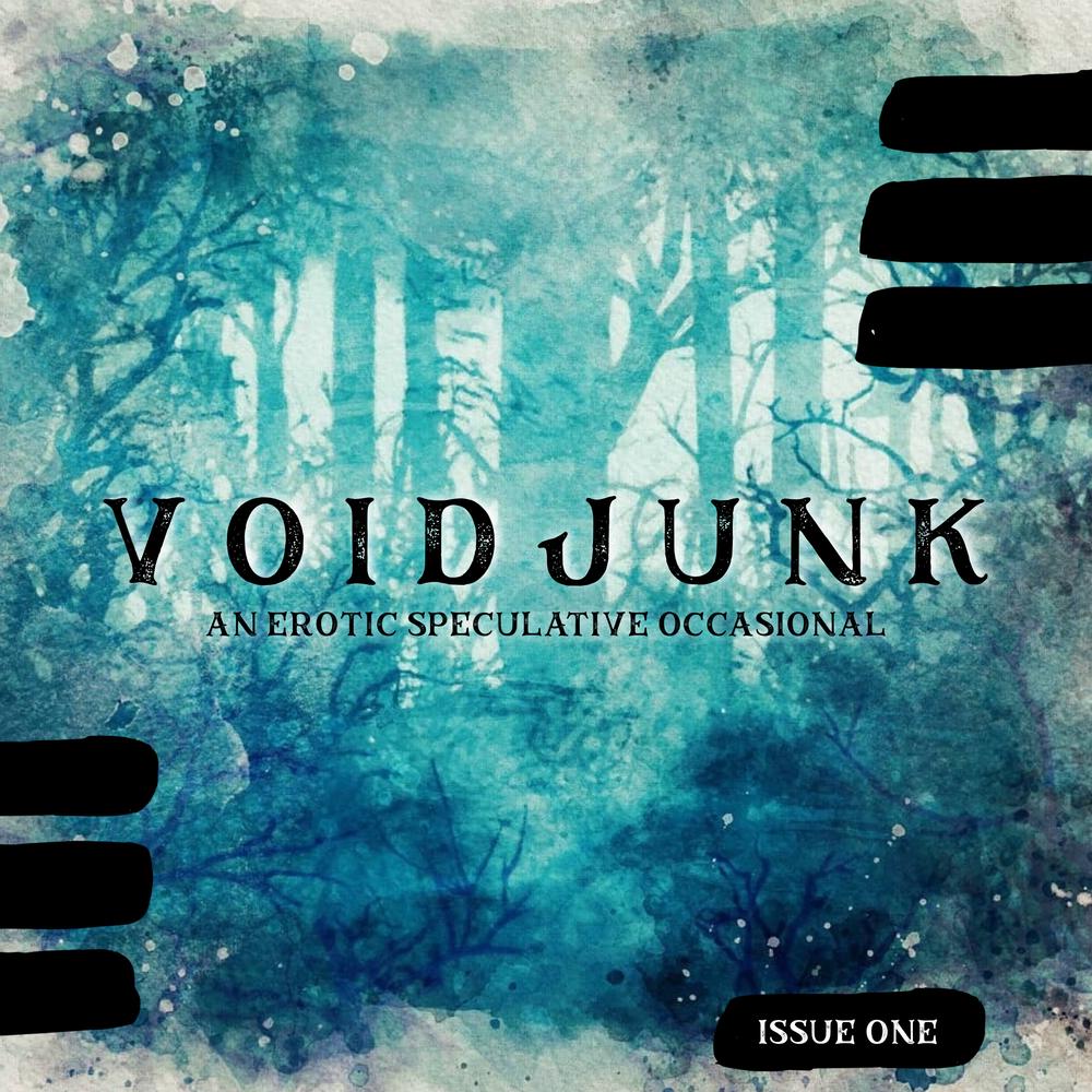 VOIDJUNK: Issue One by Jae Steinbacher, Ian Llywelyn Brown