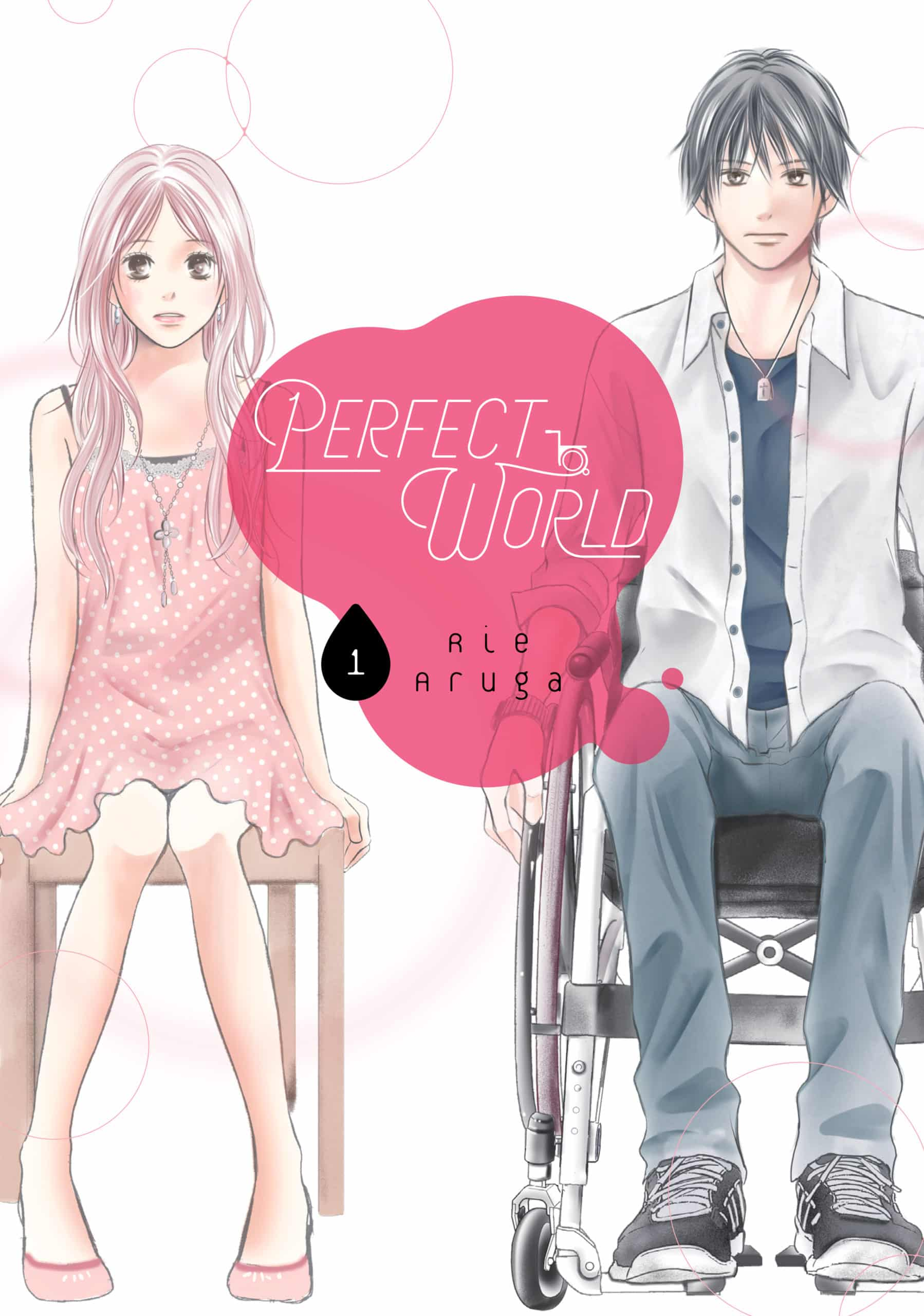 Perfect World, Volume 1 by Rie Aruga