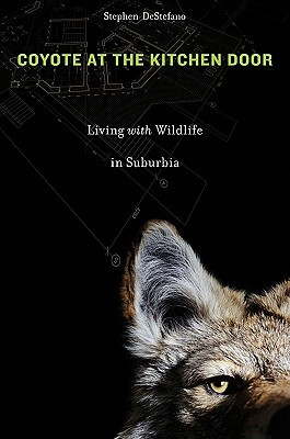 Coyote at the Kitchen Door: Living with Wildlife in Suburbia by Stephen DeStefano