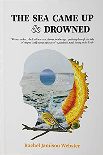 The Sea Came Up & Drowned by Rachel Jamison Webster