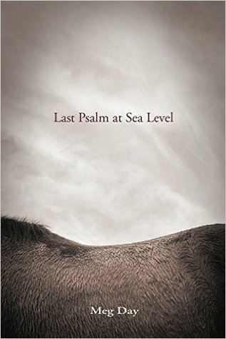 Last Psalm at Sea Level by Meg Day