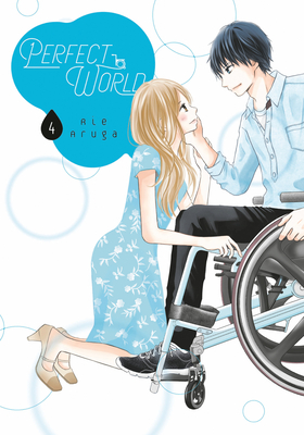 Perfect World, Volume 4 by Rie Aruga