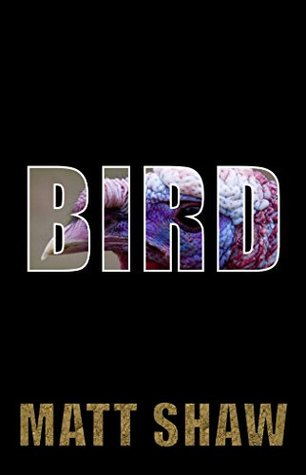 BIRD: The Troubled Tale of a Henpecked Husband by Matt Shaw