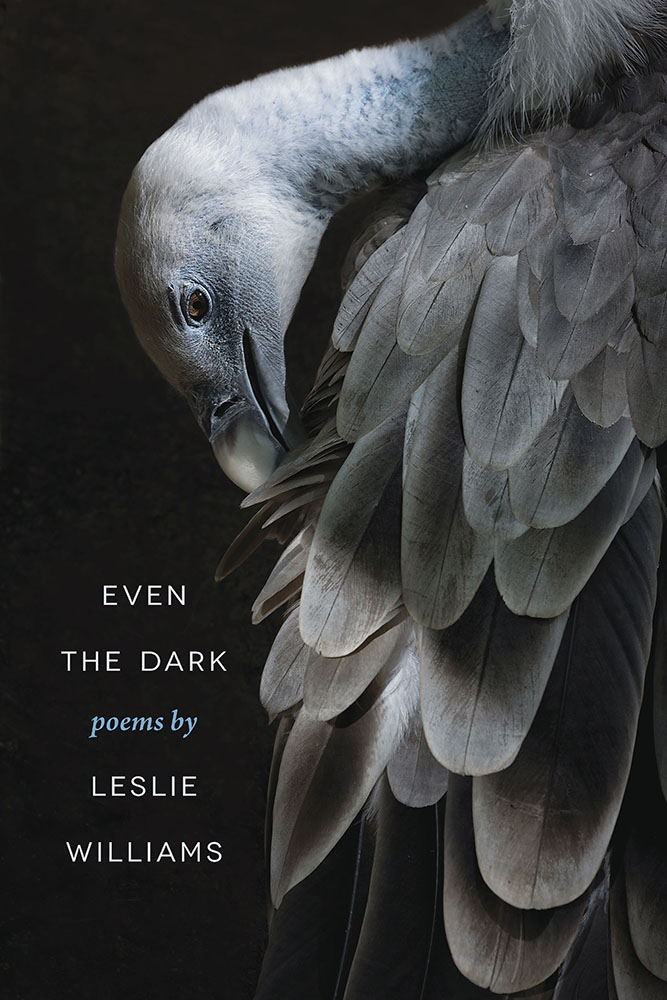 Even the Dark by Leslie Williams