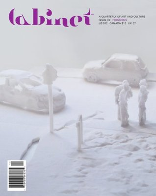 Cabinet 43: Forensics by Sina Najafi, Cabinet Magazine, Hito Steyerl