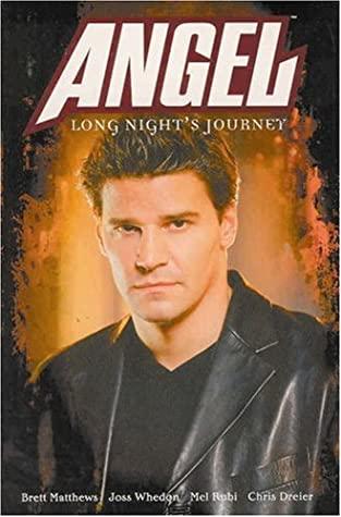 Angel: Long Night's Journey (Angel Comic #8 Angel Season 2) by Mel Rubi, Brett Matthews
