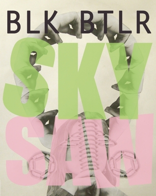 Sky Saw by Blake Butler