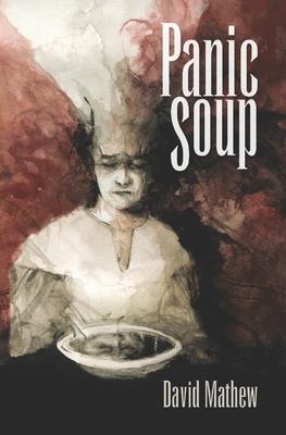 Panic Soup by David Mathew