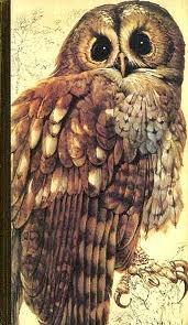 Book Of British Birds (Readers Digest) by Reader's Digest Association