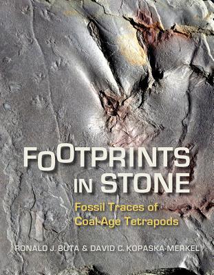 Footprints in Stone: Fossil Traces of Coal-Age Tetrapods by Ronald J. Buta, David C. Kopaska-Merkel