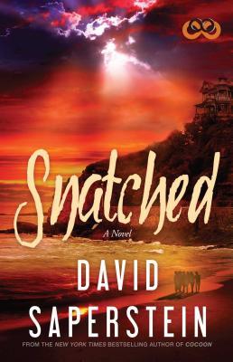 Snatched by David Saperstein