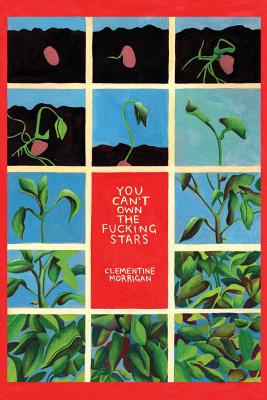 You Can't Own the Fucking Stars: Collected Writings on Trauma, Addiction, Recovery, and Transformation by Clementine Morrigan