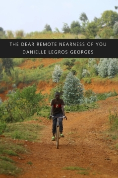 The Dear Remote Nearness of You by Danielle Legros Georges