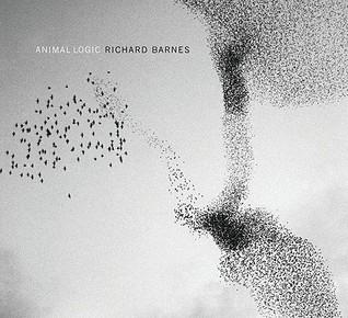 Animal Logic by Richard Barnes