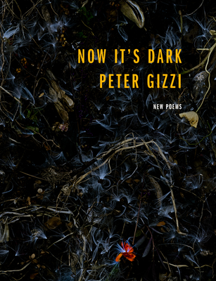 Now It's Dark by Peter Gizzi