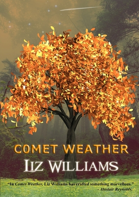 Comet Weather by Liz Williams