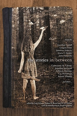 The Stories in Between: A Between Books Anthology by Catherynne M. Valente, Jeff Mariotte, Jonathan Carroll, Gregory Frost, Jeanne B. Benzel, Jonathan Maberry, Steve Ressel, Walter Ciechanowski, C.J. Henderson, Jon McGoran, Mike McPhail, Don Bethman, John Passarella, Danielle Ackley-McPhail, Patrick Thomas, Henry Long, Maria V. Snyder, Jeffrey J. Mariotte, Lawrence C. Connolly, Greg Schauer, Lawrence M. Schoen, W.H. Horner