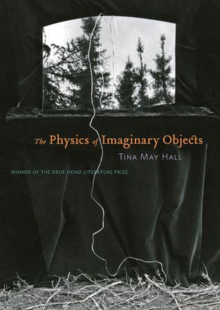 The Physics of Imaginary Objects by Tina May Hall