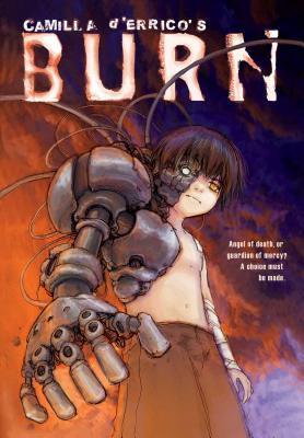 Burn by Camilla d'Errico, Scott Sanders