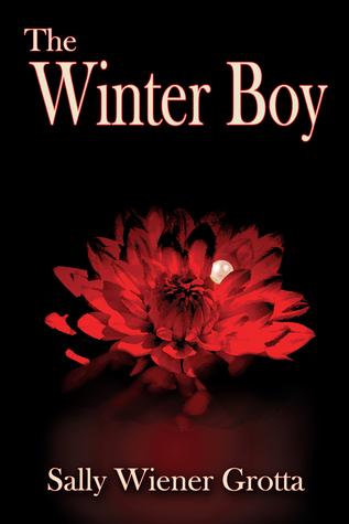 The Winter Boy by Sally Wiener Grotta