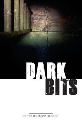 Dark Bits by Robert Ford, G. N. Braun, Jeremy Shipp