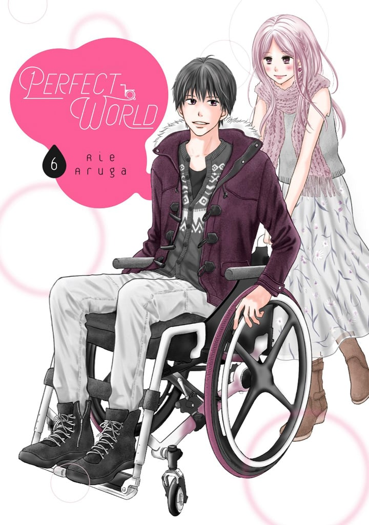 Perfect World, Volume 6 by Rie Aruga