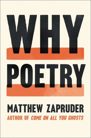 Why Poetry by Matthew Zapruder
