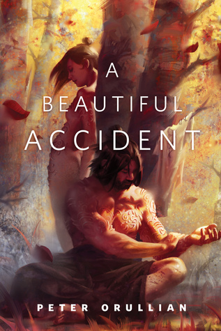 A Beautiful Accident by Peter Orullian
