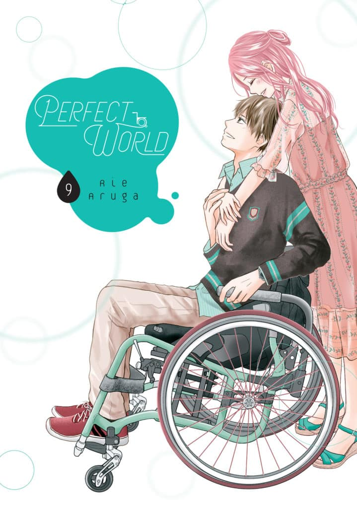 Perfect World, Volume 9 by Rie Aruga