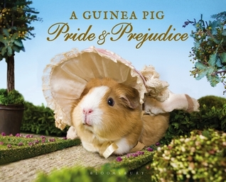 A Guinea Pig Pride and Prejudice by Tess Gammell, Alex Goodwin